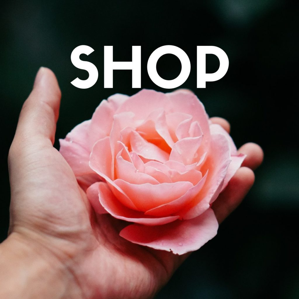 Shop Suzanne Frankenfeld