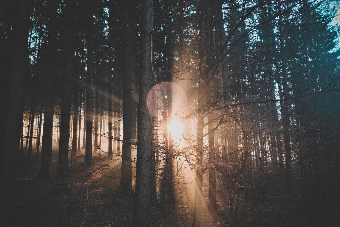 Wintersonnenwende - Kraftvolle Rituale an der Schwelle zu (Deinem) neuen Leben